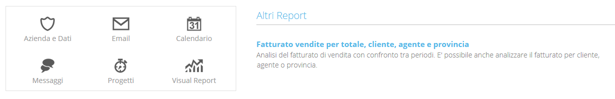 Report Fatturato vendite per totale, cliente, agente e provincia